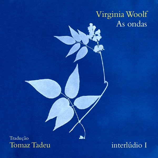 As ondas, de Virginia Woolf - interlúdio I