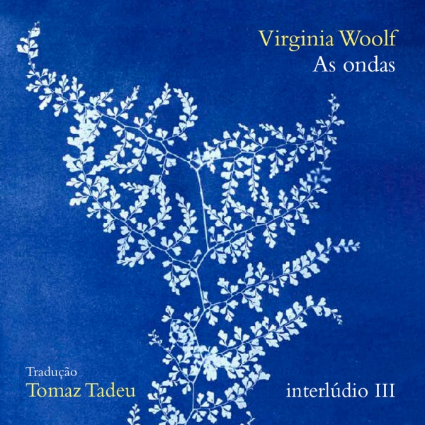 As ondas, de Virginia Woolf - interlúdio III