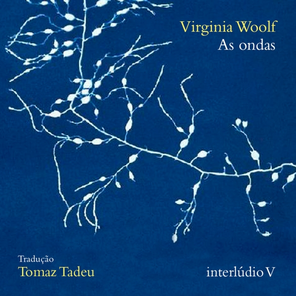 As ondas, de Virginia Woolf - interlúdio V